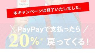 PayPayの「100億円あげちゃうキャンペーン」が終了。ビックカメラでPayPay払いでの合計還元額を公開。